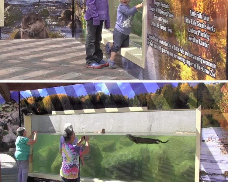 wall graphics for exhibit