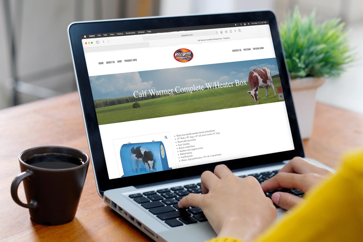 Polydome ecommerce website
